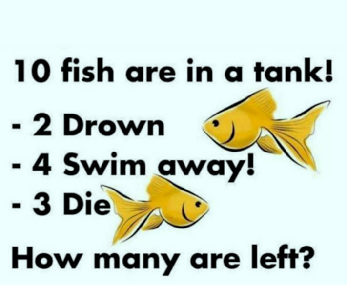 fish-riddle-1